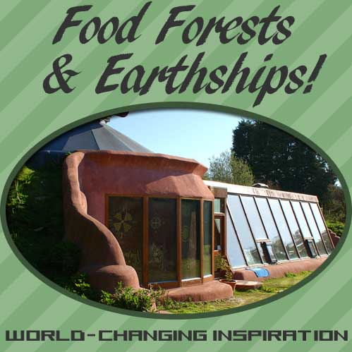 Foodscaping Food Forests and Earthships
