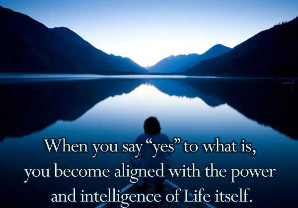 "When you say ""yes"" to what is, you become aligned with the power and intelligence of Life itself."