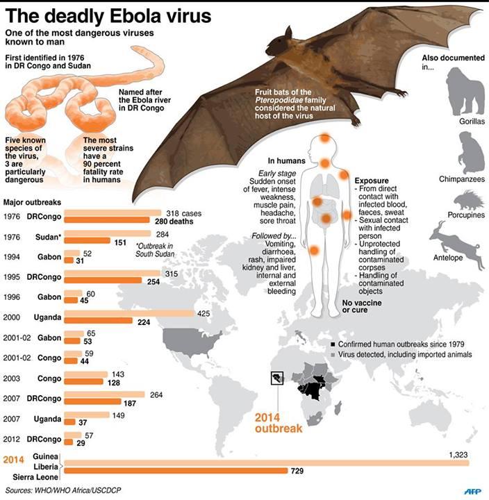 Ebola Virus Audio Notes