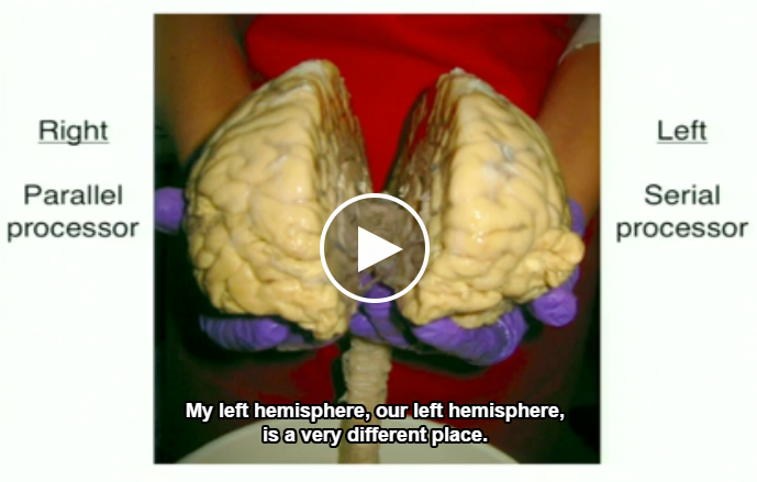 Right hemisphere - Left hemisphere