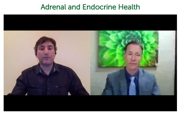 Adrenal and Endocrine Health ~ Dr. Alan Christianson