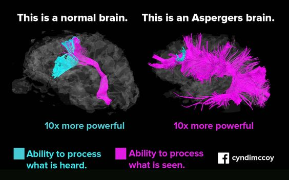 Female Asperger Syndrome Traits [Personal Habits]